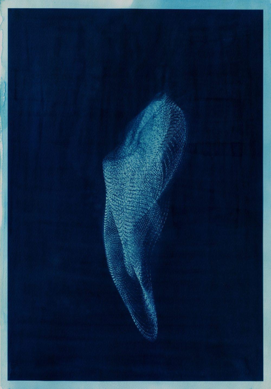 Project写真: evala Sea,See,She key-visual